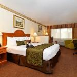 BEST WESTERN Inn & Suites At Discovery Kingdom照片
