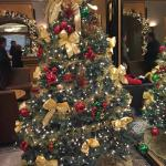 hotels lovely Christmas tree