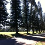 Photo de Four Seasons Resort Lana'i, The Lodge at Koele