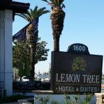 Lemon Tree Hotel and Suites Foto