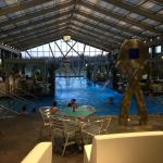 Indoor portion of the pool looking out to the outdoor section