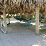 One of two hammock areas at pool