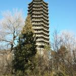 Peking University (Beijing Da Xue) Foto