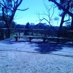 Werribee Mansion Hotel & Spa - A lovely view of the surrounding bushlands - December 2014