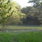The River Mopan - great for tubing!