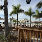 Bongos beach bar, grand plaza st. Pete