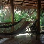 comfortable hammock on the cool patio