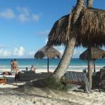 Photo of La Zebra Hotel, Tulum