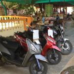 Motorbikes available for rent at the guest house. The restaurant can be seen in the background.