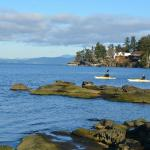 Pacific Shores Resort and Spa Foto