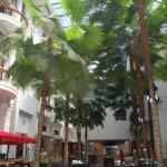 Photo of Savoy Homann Bidakra Hotel
