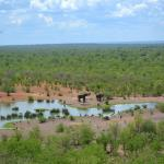 Elephants from the main lodge's viewing deck
