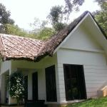 صورة فوتوغرافية لـ ‪Niraamaya Retreats Cardamom Club Thekkady‬