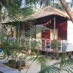 Manfredi's the best place to stay in Palolem