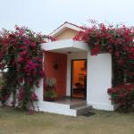 Pushkar Resorts Foto