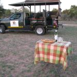 Photo de Timbavati Safari Lodge