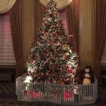 Christmas tree overlooking the lobby