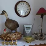 Quirky collection of ducks
