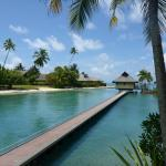 View from overwater bungalow near Dolphin centre