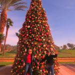 The Westin Hills Christmas Tree.