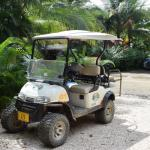 Our golf cart we rented