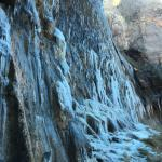 Weeping Rock Trail Foto