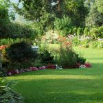 Photo of Garden View Cottage Bed & Breakfast