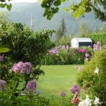Foto van Garden View Cottage Bed & Breakfast