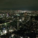 Tokyo by Night from the 48th floor of the Ritz Carlton
