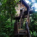 Foto van Art's Riverview Jungle Lodge
