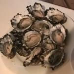 Huge oysters for $8 a dozen .