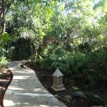 Little nature path ways between villas and pools.. takes you to the beach :)