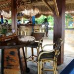 Pura Vida Beach & Dive Resort resmi