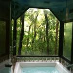 Rainforest jacuzzi hot tub