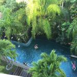 """view from rooftop deck of beautiful """"jungle"""" pool on the 312 side of the complex"""