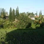 Side veiw from Front Lanai #6206