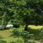 Udayana Kingfisher Eco Lodge의 사진