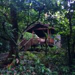 Photo de The Lodge at Pico Bonito