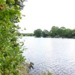 Penobscot River on the Grounds