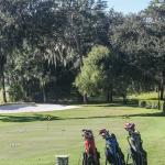 One of the four golf courses.