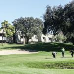 Low-rise buildings keep Innisbrook on a human scale.