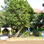 Foto Kukuluku Beach Club