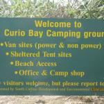 Foto di Curio Bay Camp Ground