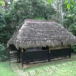 Foto de Cuyabeno Lodge