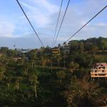 The view from the zipline platform right before you take the leap!