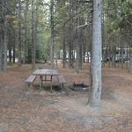 Photo of Grant Village Campground