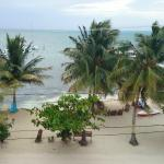 An Osprey's view- from the roof of Caye Reef