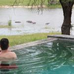 Photo de Chitwa Chitwa Private Game Reserve