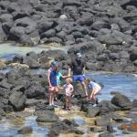 BIG4 Port Fairy Holiday Park照片