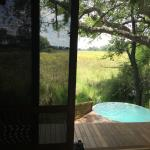Photo de andBeyond Sandibe Okavango Safari Lodge